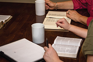 Program Info - Study Groups
