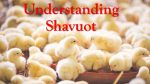 Bunch of little chickens with red text: Understanding Shavuot